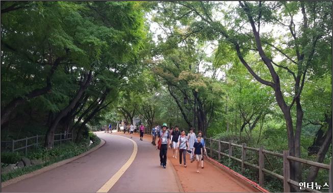 남산청소년힐링숲체험.png