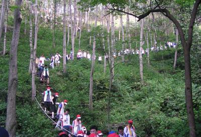 산림청, '산림관광 민간 공모전' 우수 콘텐츠 15개 선정