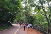 서울시, 휴대폰 OFF 숲 체험 ON!'남산 청소년 힐링 숲 체험 프로그램'운영