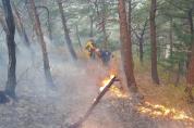 산림청, 강원도 산불 모두 진화 완료