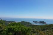 산림청, 8월 국유림 명품숲에 '무의도 호룡곡산·국사봉 숲' 선정
