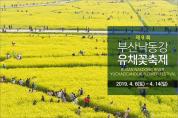 부산 낙동강 유채꽃축제 2019 개막과 유채꽃밭 걷기대회