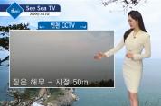 오늘의 바다 날씨, 씨씨티비(See Sea TV)로 확인하세요!